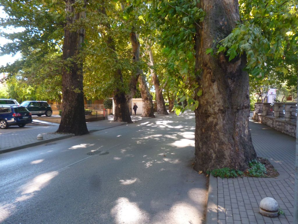 Улица Княза Бранимира, ранее Стефаниино шеталиште. Фото: Елена Арсениевич, CC BY-SA 3.0