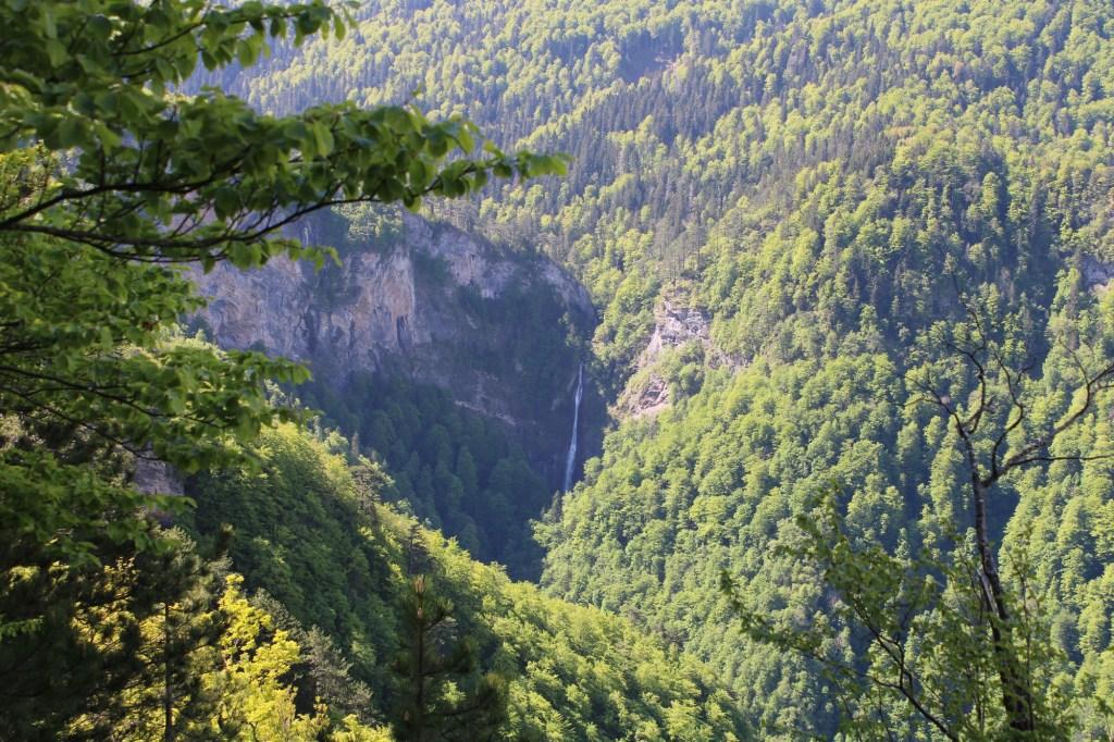 Водопад в заповедном лесу. Фото: Елена Арсениевич, CC BY-SA 3.0