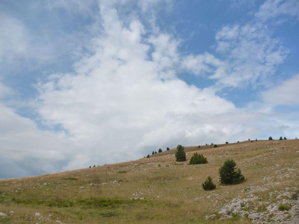 Такой пейзаж. Фото: Елена Арсениевич, CC BY-SA 3.0
