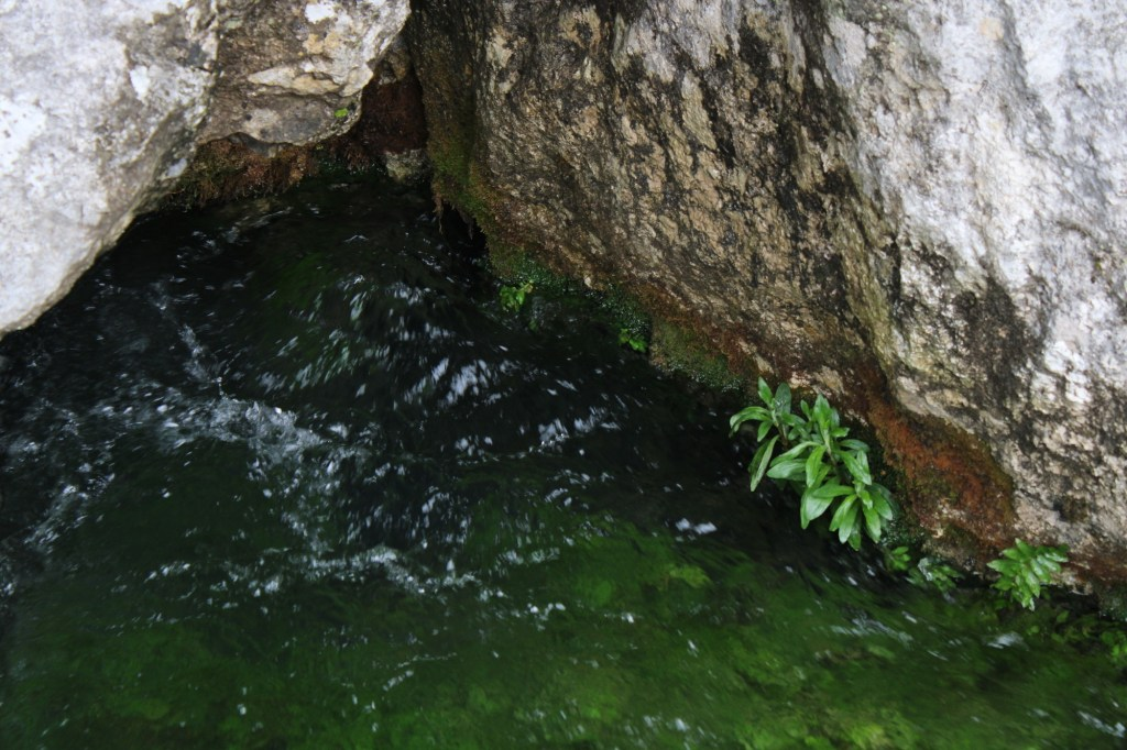 Вода и камень. Фото: Елена Арсениевич, CC BY-SA 3.0