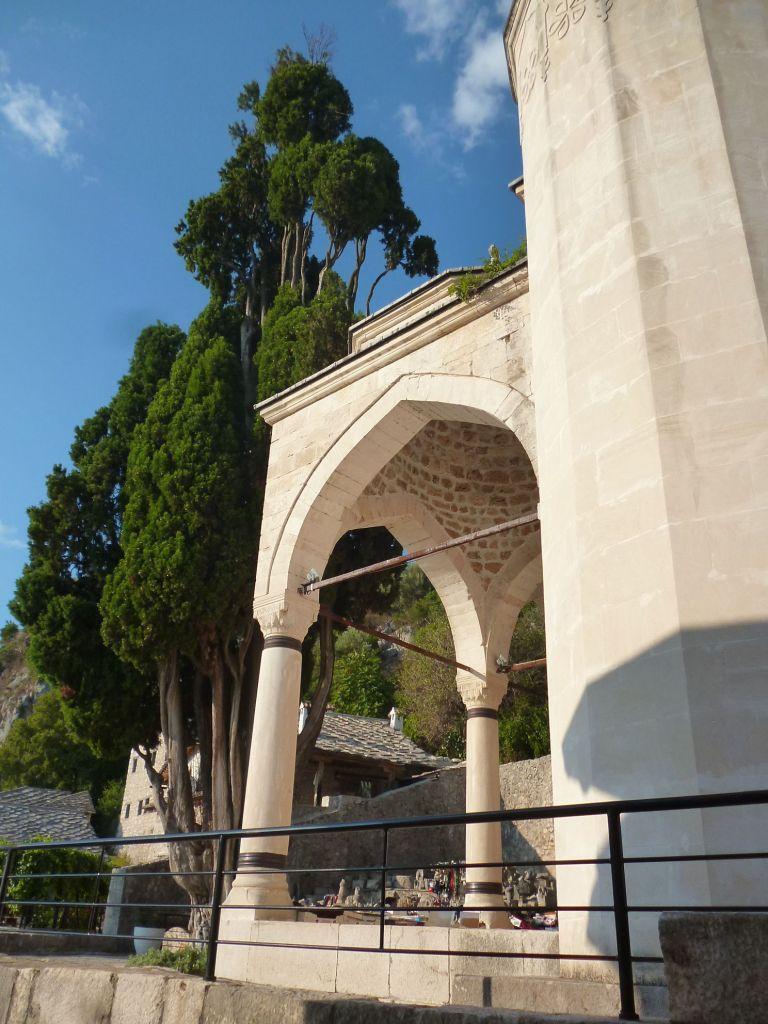 Мечеть и кипарис. Фото: Елена Арсениевич, CC BY-SA 3.0
