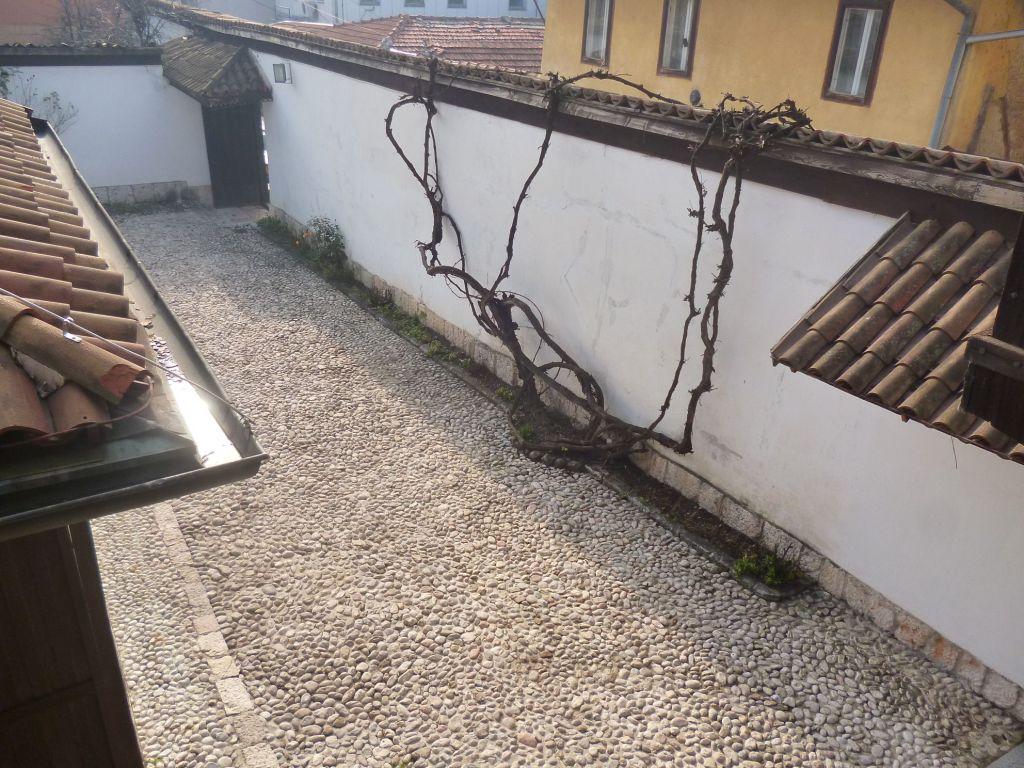 Мужская авлия, то есть двор. Фото: Елена Арсениевич, CC BY-SA 3.0