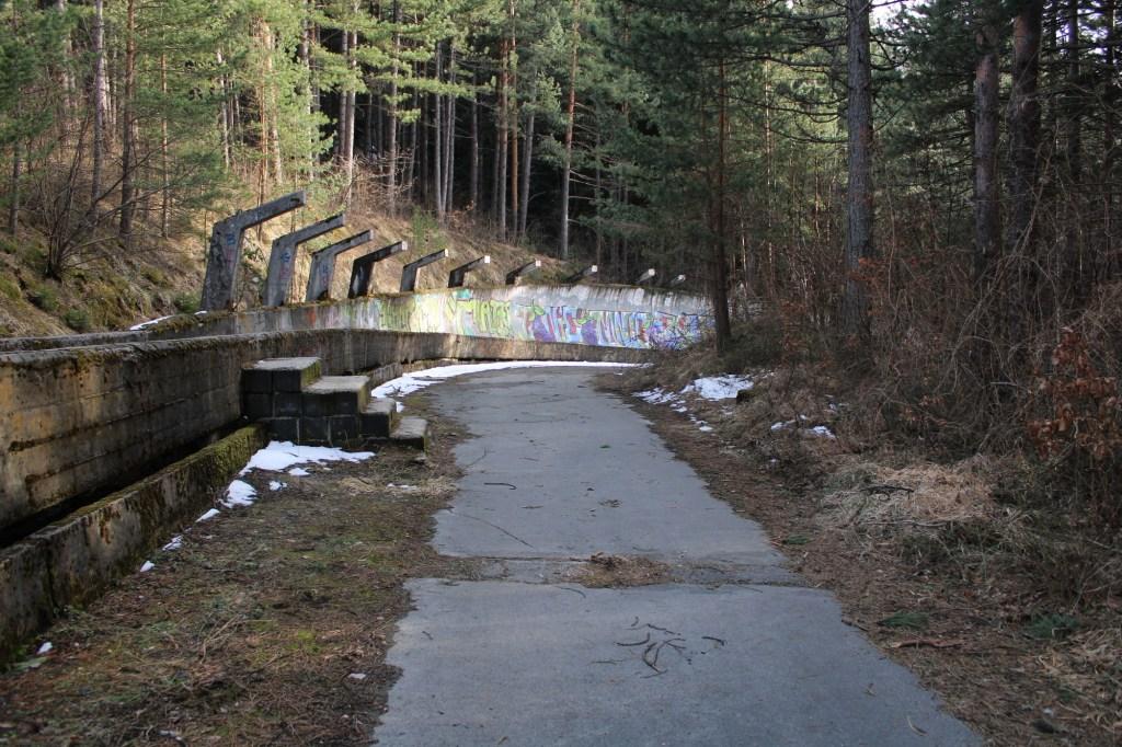 Повод прогуляться по лесу. Фото: Елена Арсениевич, CC BY-SA 3.0