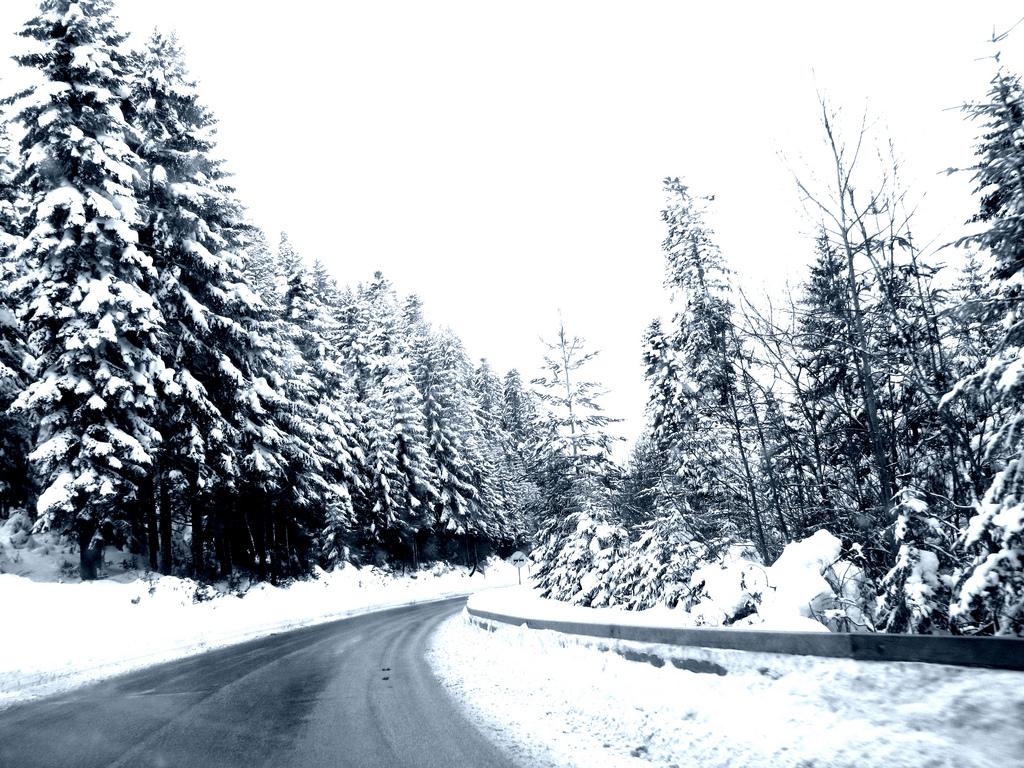 Дорога в горнолыжный центр Яхорина зимой. Ratko Bozovic, CC BY 2.0