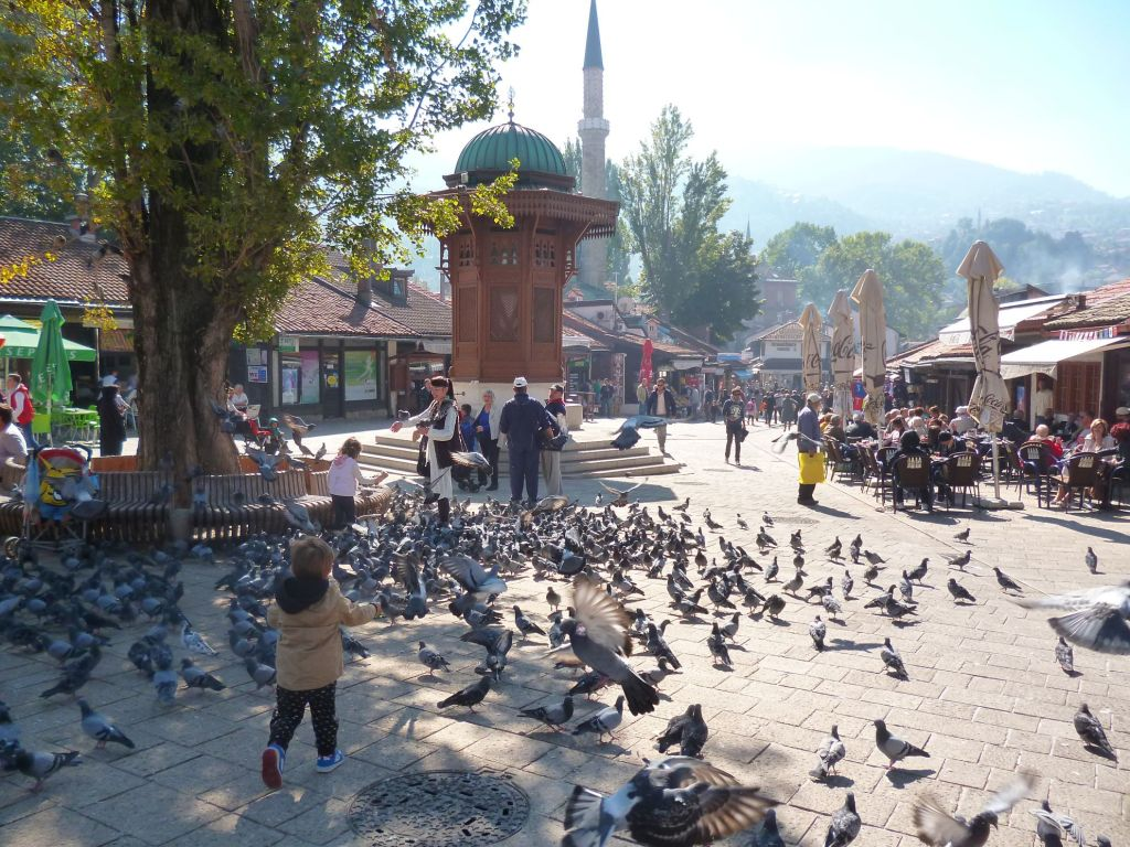 Себиль и голуби. Фото: Елена Арсениевич, CC BY-SA 3.0