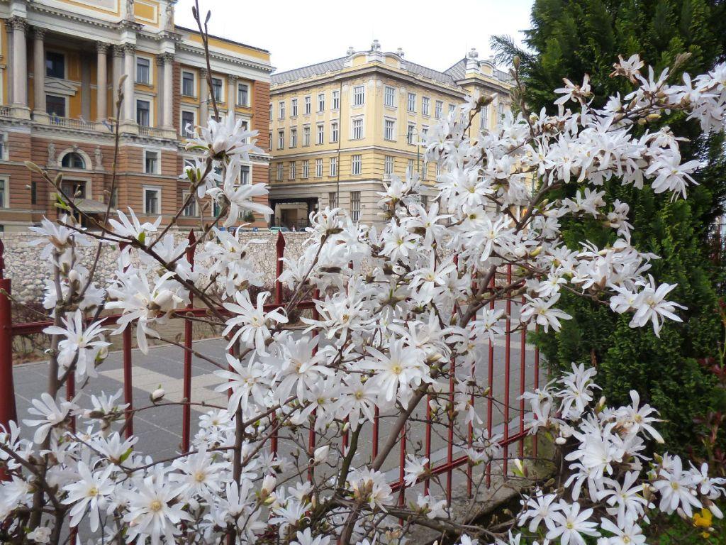 Дворец правосудия и Главная почта. Фото: Елена Арсениевич, CC BY-SA 3.0