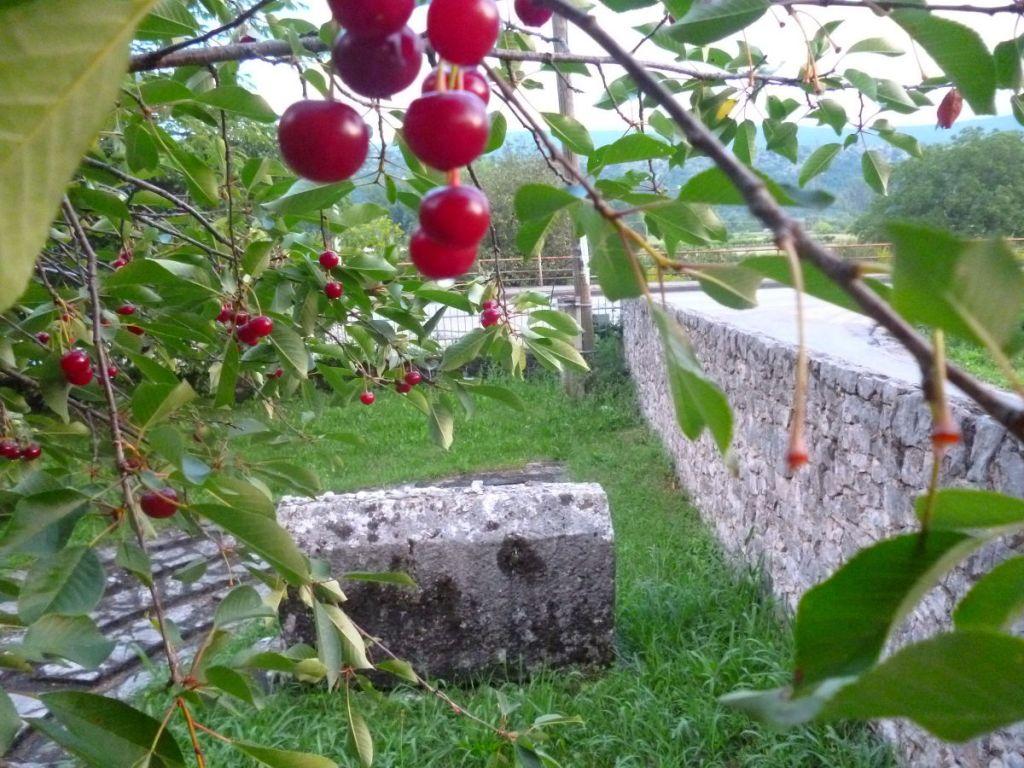 Могила раввина Моше Данона в Столаце. Фото: Елена Арсениевич, CC BY-SA 3.0