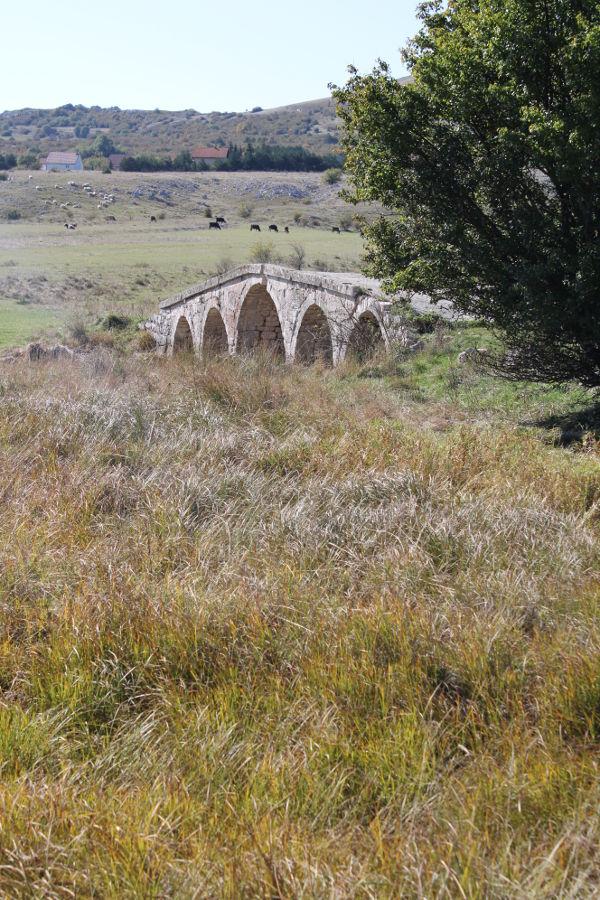 Мост на Шуйице. Фото: Елена Арсениевич, CC BY-SA 3.0