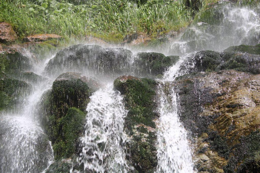 Буйная вегетация под водопадом. Фото: Елена Арсениевич, CC BY-SA 3.0