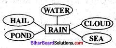 Bihar Board Class 8 English Book Solutions Chapter 1 I Wonder 2