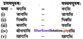 Bihar Board Class 7 Sanskrit Solutions Chapter 5 प्रहेलिका 2