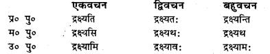 Bihar Board Class 7 Sanskrit व्याकरण धातु-रूपाणि 23