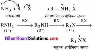 BIhar Board Class 12 Chemistry Chapter 13 ऐमीन img-30
