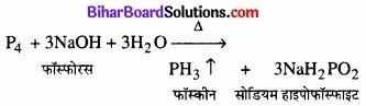 BIhar Board Class 12 Chemistry Chapter 7 p-ब्लॉक के तत्त्व img 3