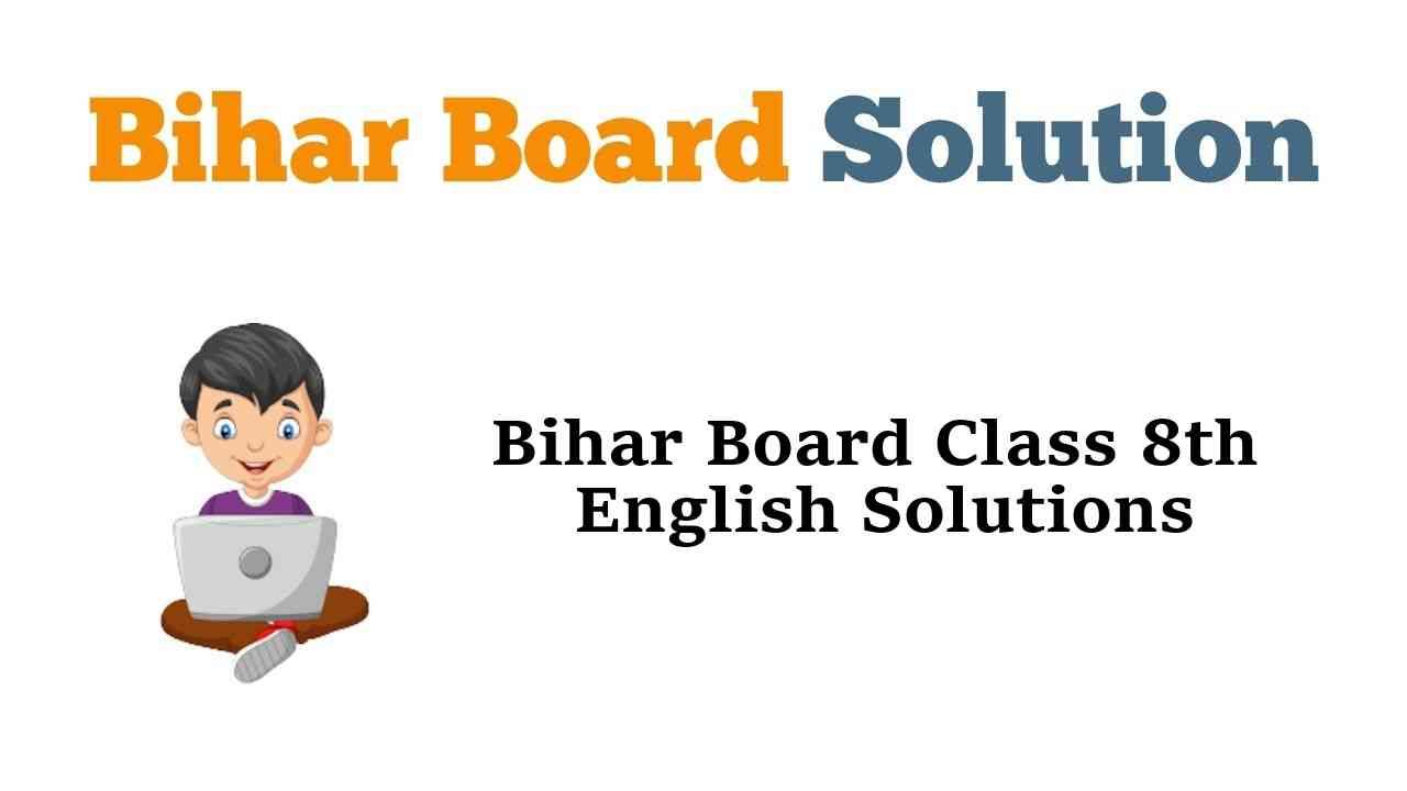 Bihar Board Class 8 English Book Solutions Radiance Part 3