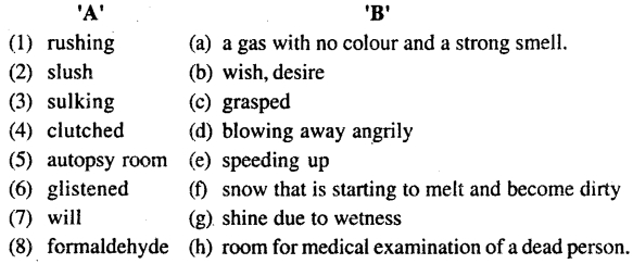 Bihar Board Class 11 English Book Solutions Poem 9 Voice of the Unwanted Girl 1