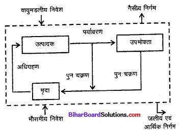 Bihar Board 12th Biology Model Question Paper 4 in Hindi 1