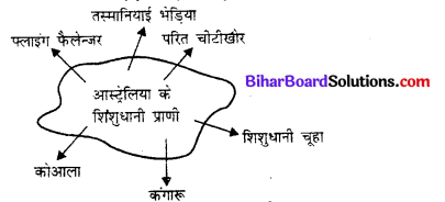 Bihar Board 12th Biology Objective Answers Chapter 7 विकास 1