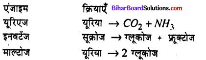 Bihar Board 12th Chemistry Model Question Paper 1 in Hindi - 2