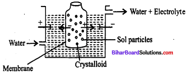 Bihar Board 12th Chemistry Objective Answers Chapter 5 Surface Chemistry 2