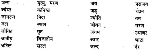 Bihar Board Class 12th Hindi व्याकरण विलोम या विपरीतार्थक शब्द 8
