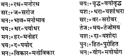 Bihar Board Class 12th Hindi व्याकरण संधि 11