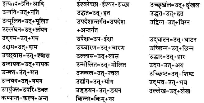 Bihar Board Class 12th Hindi व्याकरण संधि 13