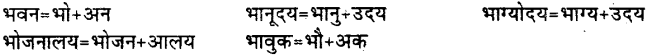 Bihar Board Class 12th Hindi व्याकरण संधि 19