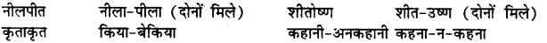 Bihar Board Class 12th Hindi व्याकरण समास 14