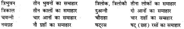 Bihar Board Class 12th Hindi व्याकरण समास 18
