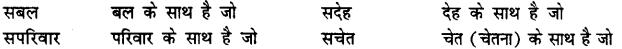 Bihar Board Class 12th Hindi व्याकरण समास 23