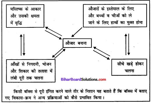 Bihar Board Class 11 History Solutions Chapter 1 समय की शुरुआत से