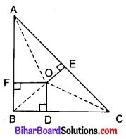 Bihar Board Class 10 Maths Solutions Chapter 6 त्रिभुज Ex 6.5 Q8.1