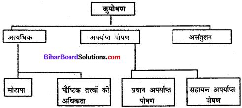 Bihar Board Class 11 Home Science Solutions Chapter 10 आहार, पोषण तथा स्वास्थ्य परिभाषा एवं संबंध