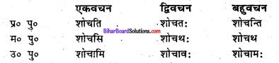Bihar Board Class 6 Sanskrit व्याकरण धातु-रूपाणि 11