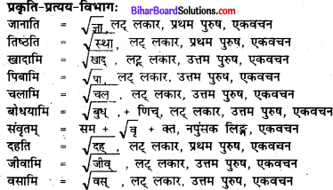 Bihar Board Class 7 Sanskrit Solutions Chapter 5 प्रहेलिका 4