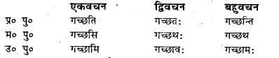 Bihar Board Class 7 Sanskrit व्याकरण धातु-रूपाणि 16