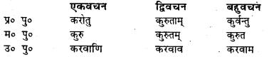 Bihar Board Class 7 Sanskrit व्याकरण धातु-रूपाणि 38