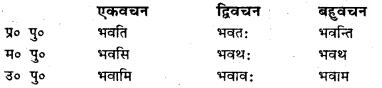 Bihar Board Class 7 Sanskrit व्याकरण धातु-रूपाणि 6