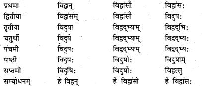Bihar Board Class 7 Sanskrit व्याकरण शब्दरूपाणि 12