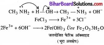 BIhar Board Class 12 Chemistry Chapter 13 ऐमीन img-17