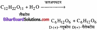 BIhar Board Class 12 Chemistry Chapter 14 जैव-अणु img-1