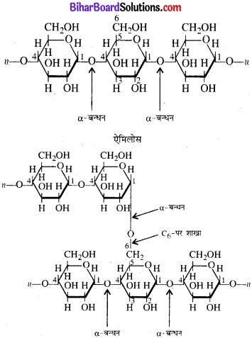 BIhar Board Class 12 Chemistry Chapter 14 जैव-अणु img-6