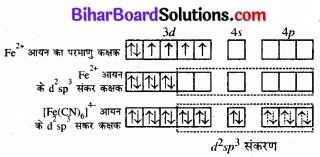 BIhar Board Class 12 Chemistry Chapter 9 उपसहसंयोजन यौगिक img 24