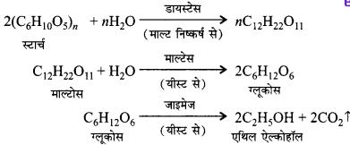 Bihar Board Class 10 Science Solutions Chapter 4 कार्बन एवं इसके यौगिक