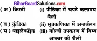 Bihar Board Class 11 Biology Chapter 8 कोशिका जीवन की इकाई