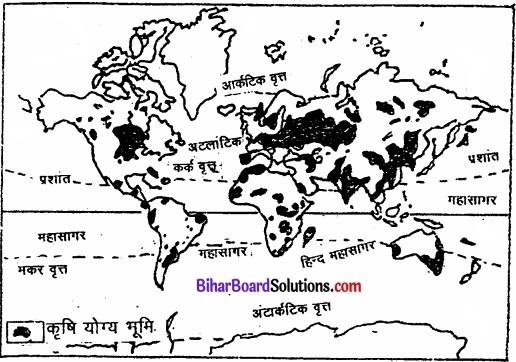 Bihar Board Class 12 Geography Solutions Chapter 5 प्राथमिक क्रियाएँ img 6