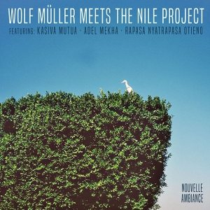 Wolf Müller - Meets The Nile Project - AMBIANCE003 - AMBIANCE