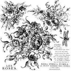 Iron orchid designs stempel Rose toile