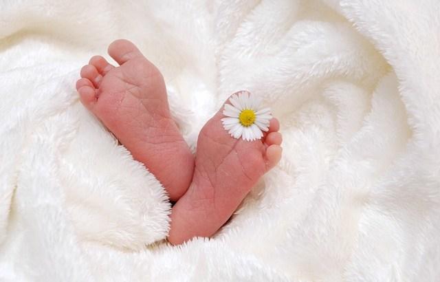 葉酸とは?~妊娠を計画している女性がとるべき栄養素のひとつ